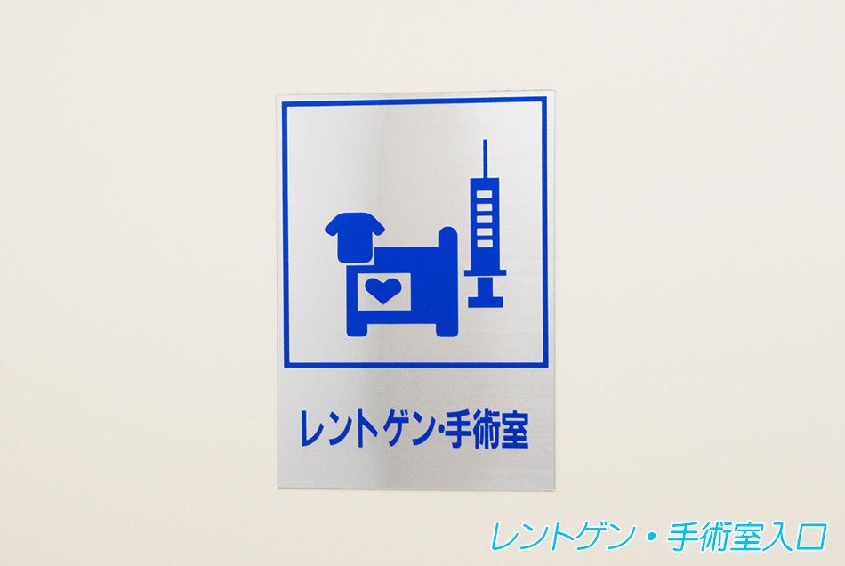 shujutsu_iriguchi_2